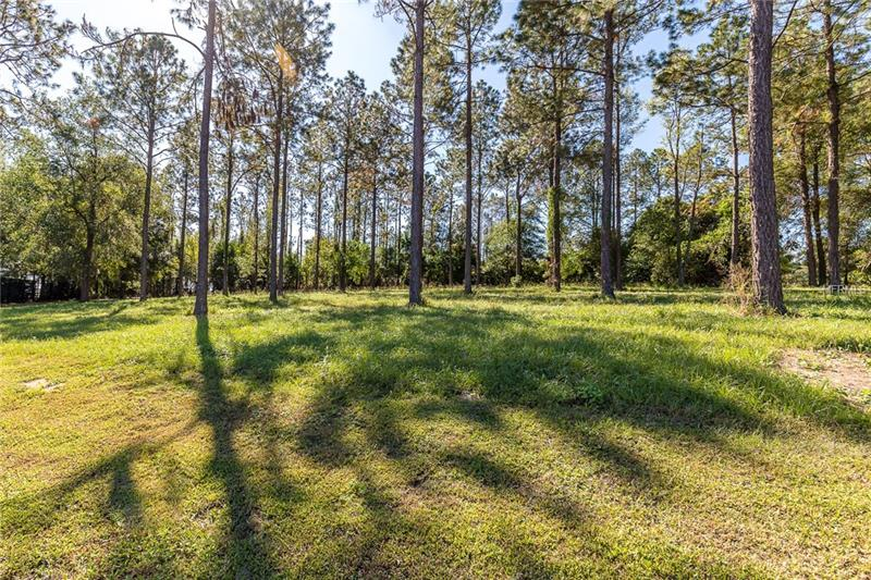 This BREATHTAKING PROPERTY  is nearly an acre that is encompassed by a gorgeous view of the surrounding area. Nestled within in the coveted (Deed-Restricted) Ramsey Ridge Community. Minutes away from I75, University of St. Leo, the world renowned Lake Jovita Golf and Country Club, quaint antique stores and charming local restaurants.  Come build your dream home today!