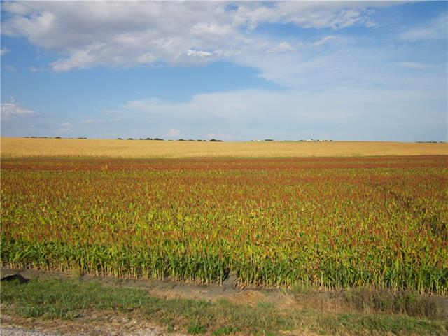 The 167+/- acres is priced at $4,9500.00 per surveyed acre. Awesome tract with possibility of being subdivided with 2400+/- ft of paved road frontage. Are can be utilized as single family location with acreage used as cash income from row crop rental or planted in grass for cattle or horses.