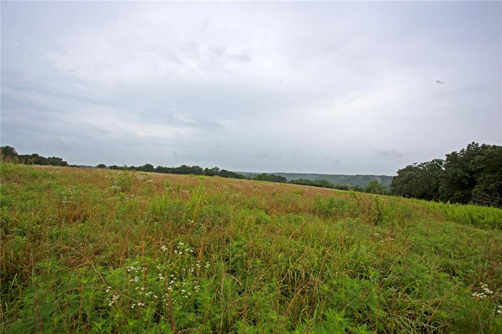 13592 Farm Road 2140, Cassville, MO 65625