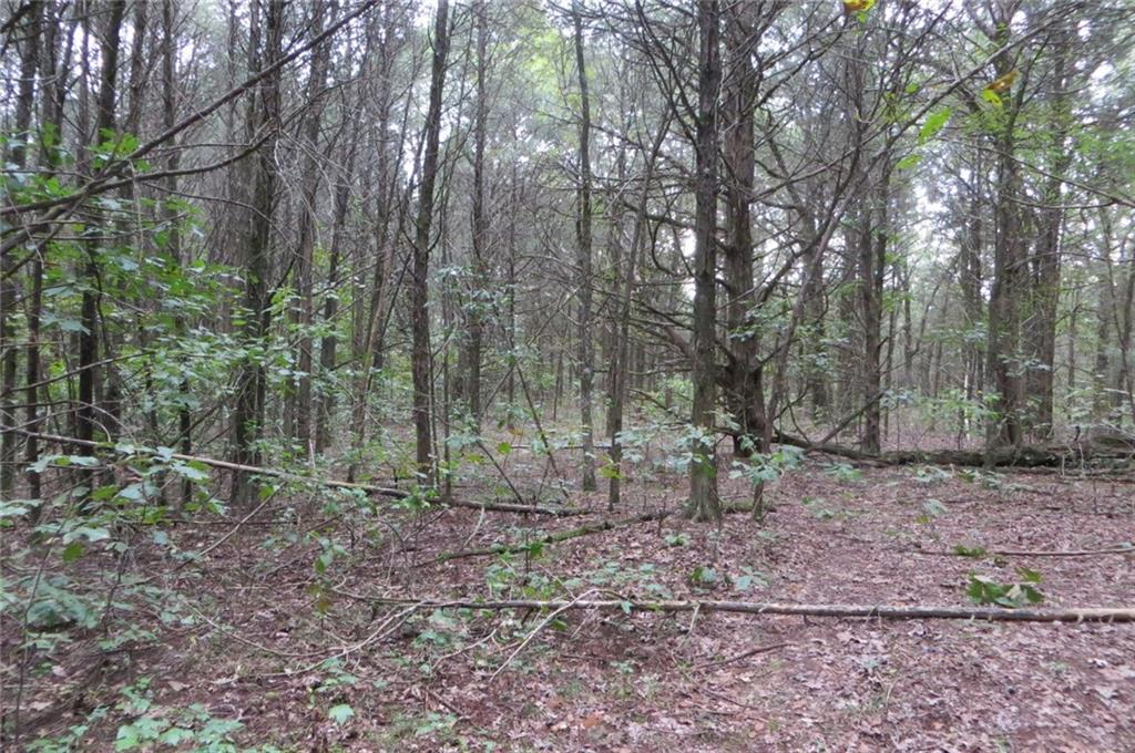 Property for Sale at Pecan Grove Road, 145 Acres in Alma, AR for