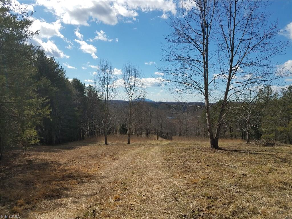 Stunning views of Pilot Mountain and winter views of the Sauratown range from potential building site on this 19.9 acre tract. Elevation is 1220 to 1420. Stream on property with rock outcroppings. There is a Stokes County perk permit for a 3 BR home dated 7/24/14.