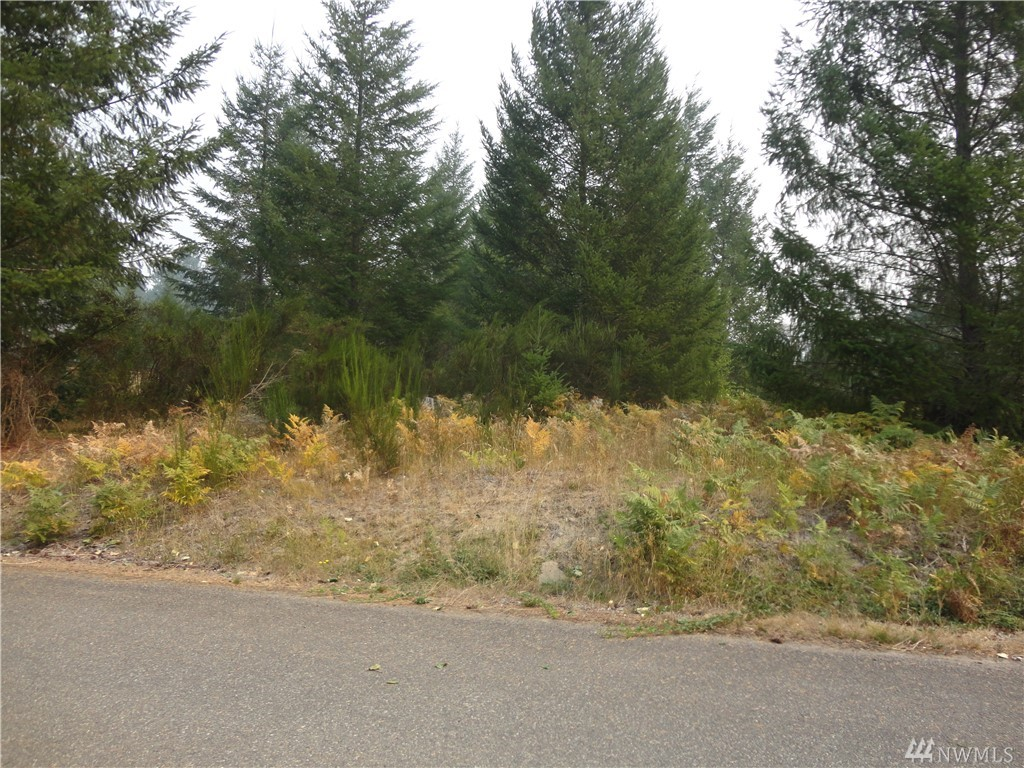 Nice double building lot in small development of Trails End. Water and power at the street.  Water available for one lot only.  Will need septic system.  Community riverfront picnic area with firepit.  Beautiful views of Tatoosh range and Cascade foothills. Close to Mt. Rainier National Park, White Pass Ski Area, and Gifford Pinchot National Forest for year round recreation and wildlife viewing.  Combine with other contiguous lots on Cottonwood Lane or Jack Fir Ct for larger parcel and privacy.