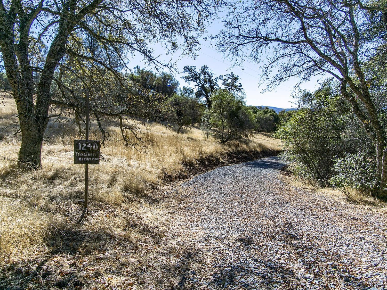 1240 Hound Hollow Road, Pilot Hill, CA 95664