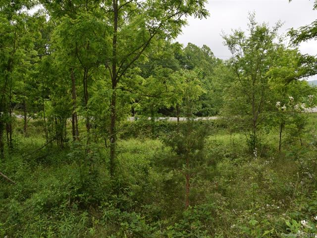Great 2.46 Acre Lot.  Level, clear to wooded. On Paved Road and NO Restrictions.(Manufactured, Modular, Site and/or Custom).  Located halfway between Hendersonville and Lake Lure. Quite location.