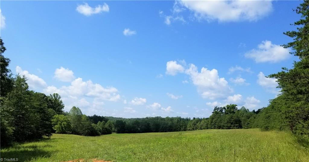 Wonderful 25 acre tract of land with multiple cleared fields already in a good stand of fescue. Would be perfect for your private home off the road and secluded.  First cleared field would make a perfect home sight and you would have at least 12 acres of land left clear for horses or animals.  The back of the property has a nice creek along the border.  This is a must see!  And priced great for the quality of land you are buying. This is a nice piece do not miss this!