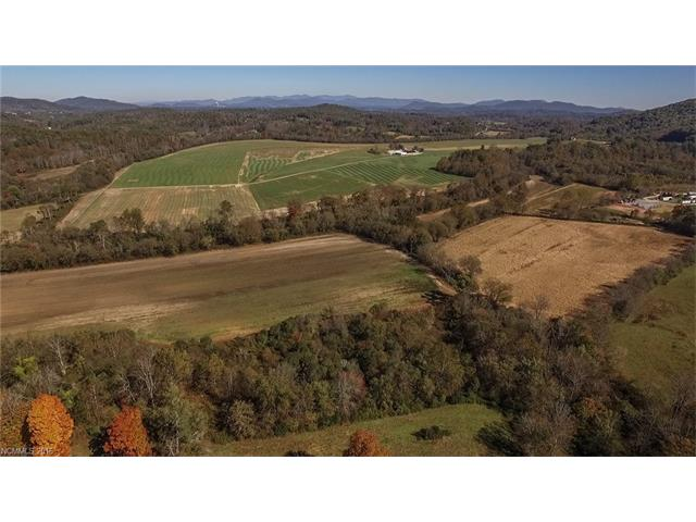 One of the last large scale development tract left in the AVL region. Gentle to rolling pasture, moderate terrain w/panoramic views & French Broad River frontage make the perfect place for a res. development. Located within the triangle of Asheville, Brevard, and Hendersonville-it combines perfect on-site lifestyle community amenities w/easy access to healthcare, city services & vibrant arts communities. Master plan from a devlpmt that was previously considered is avail. Add'l acreage avail.
