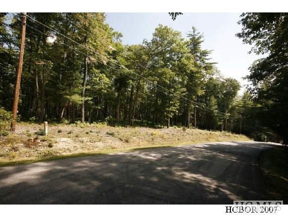 A WONDERFULLY WOODED LEVEL BUILDING LOT LARGE ENOUGH TO EASILY ACCOMODATE THE HOME OF YOUR DREAMS.WILDWOOD MOUNTAIN IS A VERY NICE WALK AROUND NEIGHBORHOOD WITH A FISH POND AND TENNIS COURT. Owner/broker