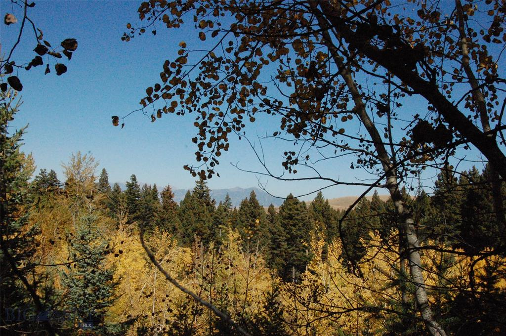 TBD Martinez Springs, Bozeman, MT 59715