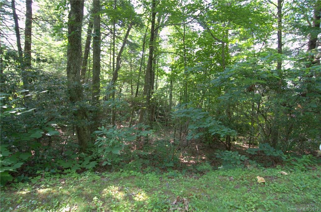 Nice gentle laying lot at the top of the world. Beautiful views and lush woods with Mtn laurel, wildflowers, wild berries, hemlock trees and many hardwood trees.  Tired of the summer heat? No A/C needed up here. Build your dream home here. Shared driveway in place. Wonderful community with green space and walking trails. Community club house to enjoy.