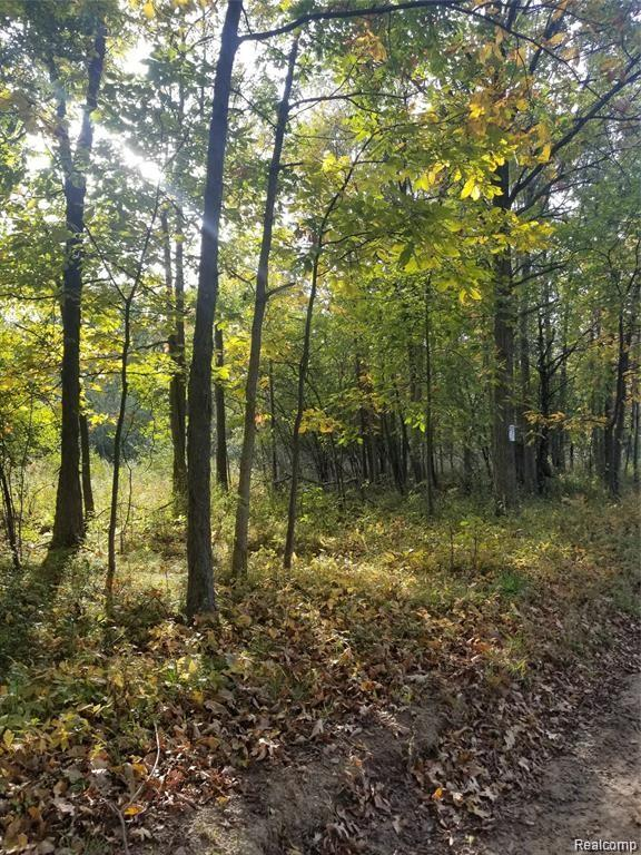 Build your dream home surrounded by nature.  Great piece of land located in a quiet peaceful setting. Ann Arbor School district.