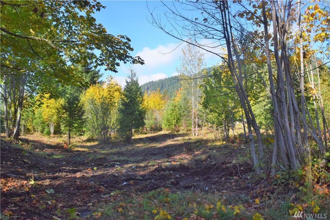 Beautiful build site for your dream home! Cleared and Level 1.35 acre lot. Close to town of Randle WA. No Flooding. ATV routes right from property. 45 Mins to White Pass Ski Resort & Mt Rainier Natl Park. 2 1/2 hours to SEA & PDX. Randle WA offers many outdoor opportunities for hiking, fishing, camping, and hunting. Within a short distance to Riffe Lake, Cowlitz Falls, Gifford National Forest and the town of Packwood. Power in street, Well on property. Septic perked and soon to be approved.