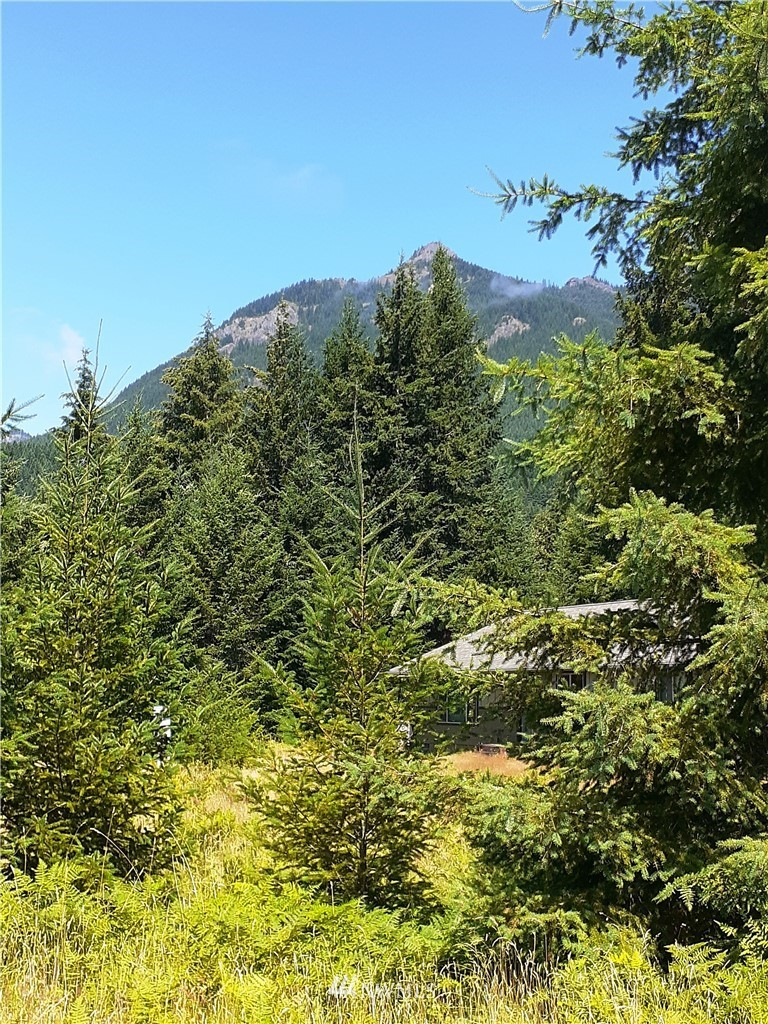 Wonderful and ready for your building ideas on large 1.15 Acre in Trails End Community. Great 360 degree territorial view with southern exposure and magnificent view of Butter Peak. 3 bdrm septic approval and site plans available. Gorgeous community river access. No clearing necessary. Close to Packwood and Hwy 12 with access to skiing at White Pass. Enjoy hiking, fishing, biking, canoeing and many more outdoor activities.