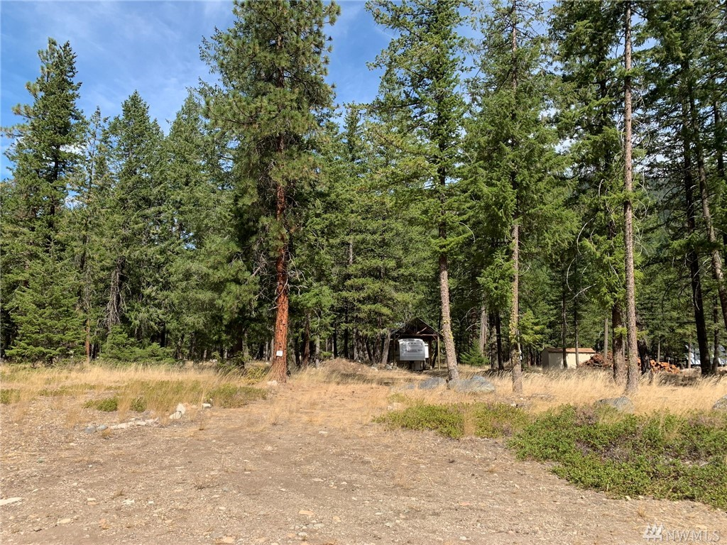 MAZAMA/Lost River Airport Community:  Large building lot on the airstrip.  Complete with RV cover and camper trailer, water and power included.  Building site with grand mountain views and front row view of the scenic dirt runway and occasional aircraft flying in and out.  Year-round recreation out the door; hiking & biking trails, floating the river, USFS access, snowmobiling, clean fresh mountain air.