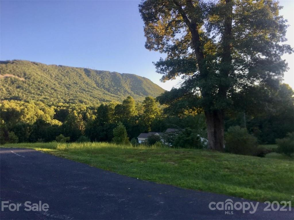 Beautiful lot in the Crab Creek Valley Subdivision. Located 20 minutes from Hendersonville and 30 minutes from Brevard. View of Pinnacle Mountain.