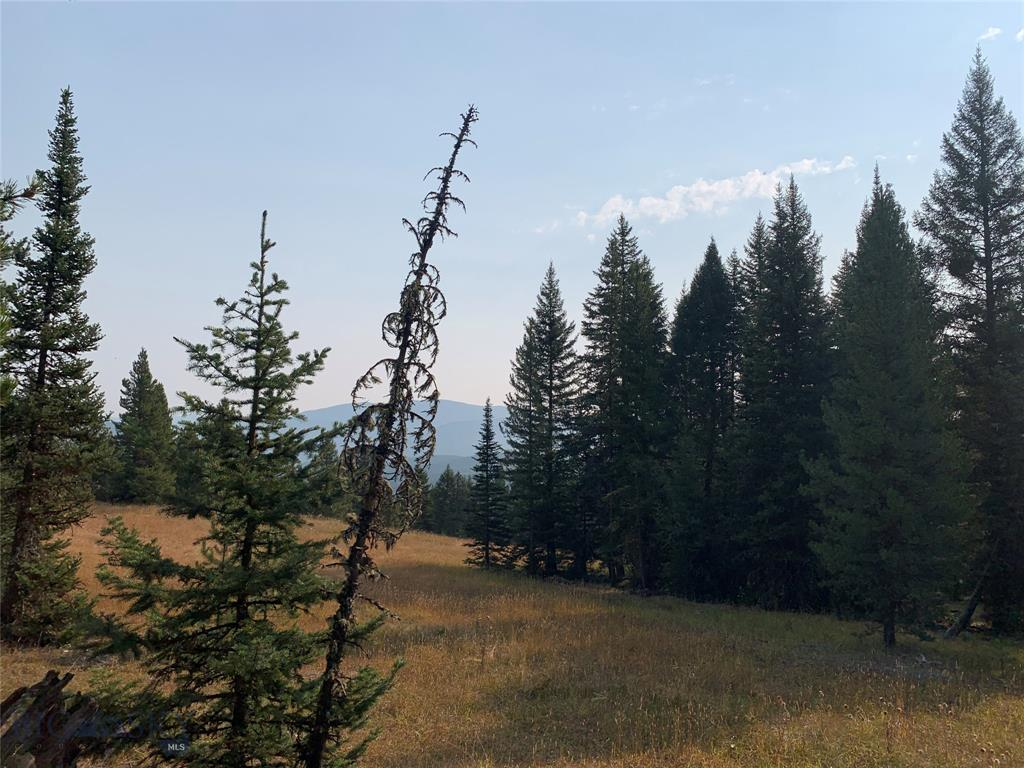 3.47 acres with old growth trees and long views over a gorgeous meadow with the Spanish Peaks in the background. Convenient location 2 miles to Big Sky Town Center and 2 miles to the Spanish Peaks clubhouse (skiing and golf). Buyer responsible for installing well and septic. Membership at Spanish Peaks Mountain Club mandatory. A Golf or Ski/Social membership is available.