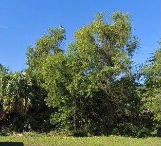 2044 SE Berkshire Boulevard, Port Saint Lucie, FL 34952