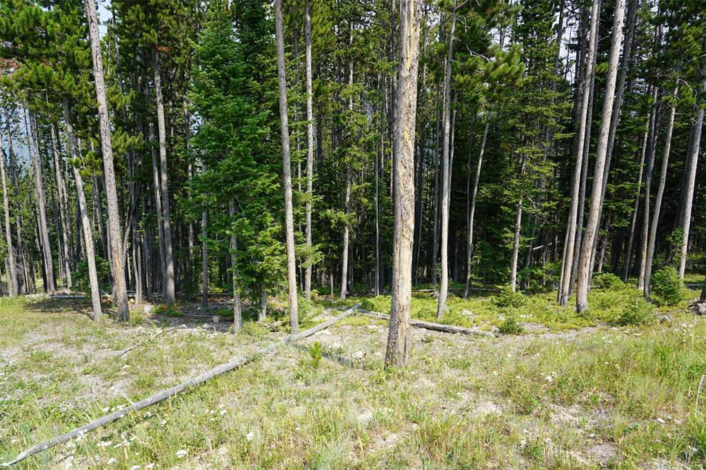 Ski-in-ski-out lot in Moonlight Basin Resort, terrific views of Spanish Peaks.  Build site is on the south side of the property just above a ski trail.