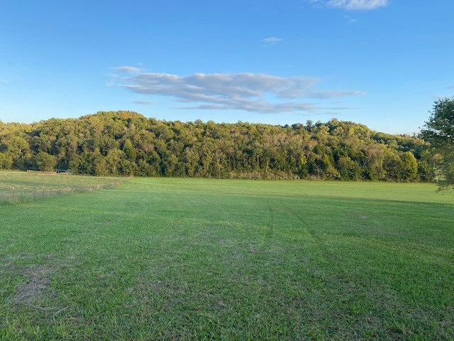 All pasture land. Very gently sloped. Ready for You and your Builder. This 5.649 acres is coming off a 44 acre tract.
