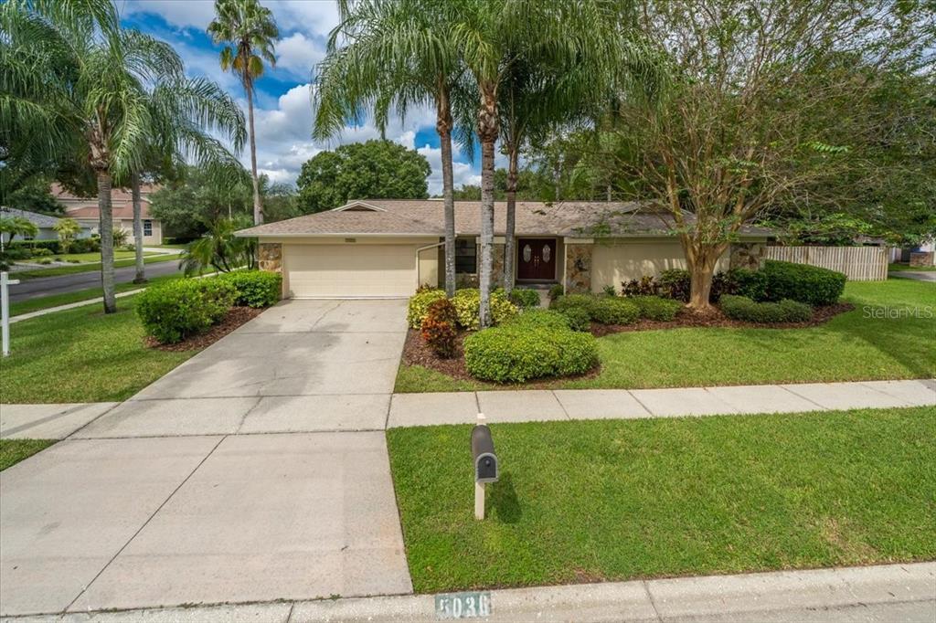 5036 Barrowe Drive, Tampa, FL 33624