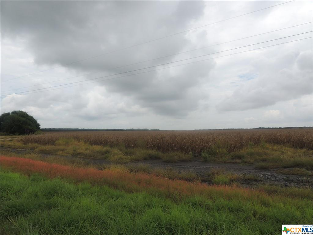 COMMERCIAL acreage on FM 3084/Half League Road. Currently, the property is being lease for row crop. No minerals convey.