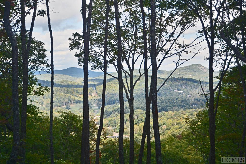 Located in GlenCove, the newest development by Old Edwards, this estate lot includes 5 +/- acres with a phenomenal view overlooking the mountains. Located at the end of the road offering extra privacy and would make for one of the easier sites to build on due to the topography! Walking distance to club amenities. Priced at $799,000 and includes a membership to the club. GlenCove is a multigenerational wellness community in the beautiful Norton Community of Cashiers, North Carolina directly next to Old Edwards Club at Highlands Cove. Community amenities include: Organic community garden & farm, recreational lake with boathouse offering fishing, kayaking, canoeing and paddleboarding, hiking trails to Shortoff and Yellow Mtn National Forest, 12-hole par 3 golf course, recreation barn with bowling, pool tables, ping pong, kids arcade and state-of-the-art golf simulator lounge, 4-lane heated lap pool with kid's splash pool, playground, pickleball, bocce ball, multi-purpose court, fitness & wellness center with spa services, and a world-class short game golf area. Members of Old Edwards will have full use of these amenities plus all of the amenities at Old Edwards Club: full service dining room and bar, chimney terrace, 18-hole golf course, tennis, fitness, outdoor heated mineral pool AND the amenities at Old Edwards Inn & Spa: access to a relaxed European style luxury spa, two additional pools, pool cabana, fitness center and fitness classes.