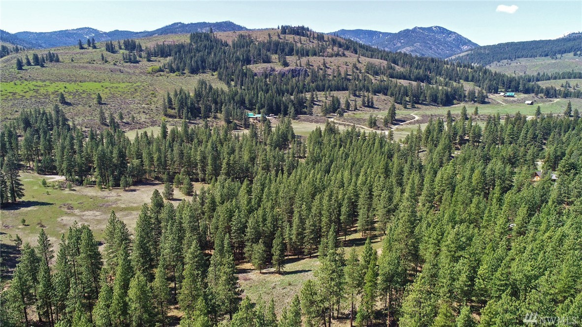 Wolf Creek VIEWs! 9.3 acres of quiet pristine rolling wilderness on a dead end road. Less than 5 miles from Winthrop. 30+gallon per minute well on site, power wire pull point on property. Driveway in place to ideal, leveled building site. Private road has shared maintenance agreement. Cleared meadow ready for you to build today.  Rolling hills and vistas populated with full growth Ponderosa Pines and Douglas Fir. Minutes from wintertime Methow Trails.  Feels remote, but you can bike into town!