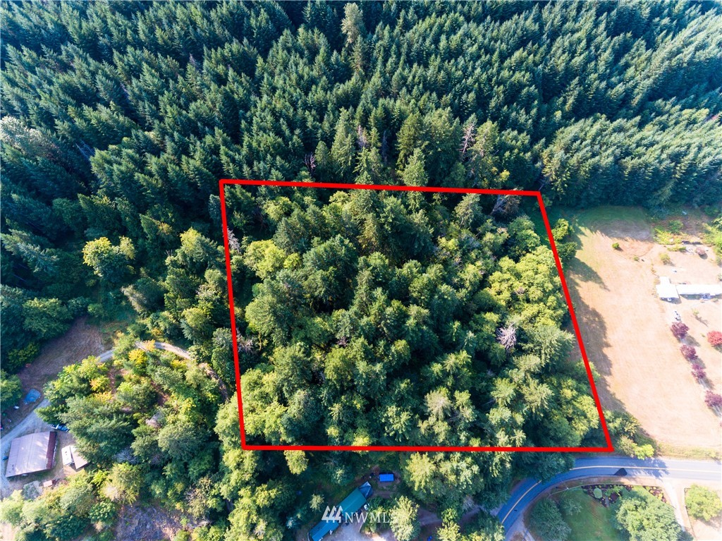 Timber recently cruised by seller, 120,000 BF of quality fir, 9,000 BF Alder. Some very large. Potential view building site on top of relatively steep grade. Would require road to the top to build but a great view once you are there. Timber prices are up and quality is good. Many options for this property to the right buyer.