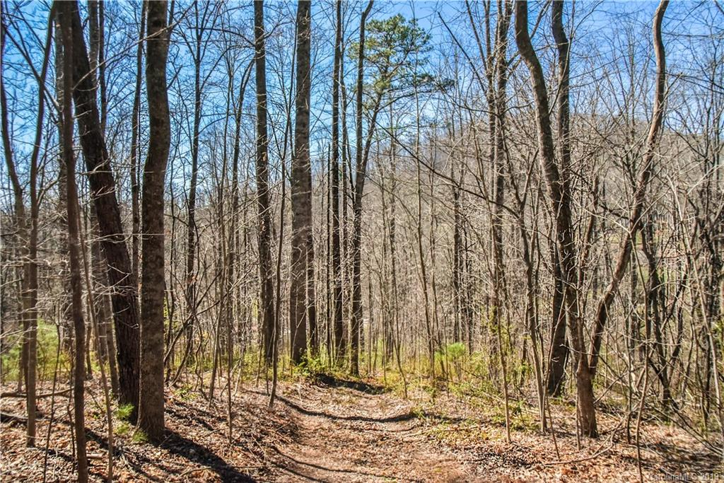 Nice unrestricted wooded south facing property in a wonderful Fairview location only 15 minutes from DT Asheville and the Blue Ridge Parkway. This property lays well and is very build-able. The property has a creek and large mature trees. Build your dream home or family compound here!!