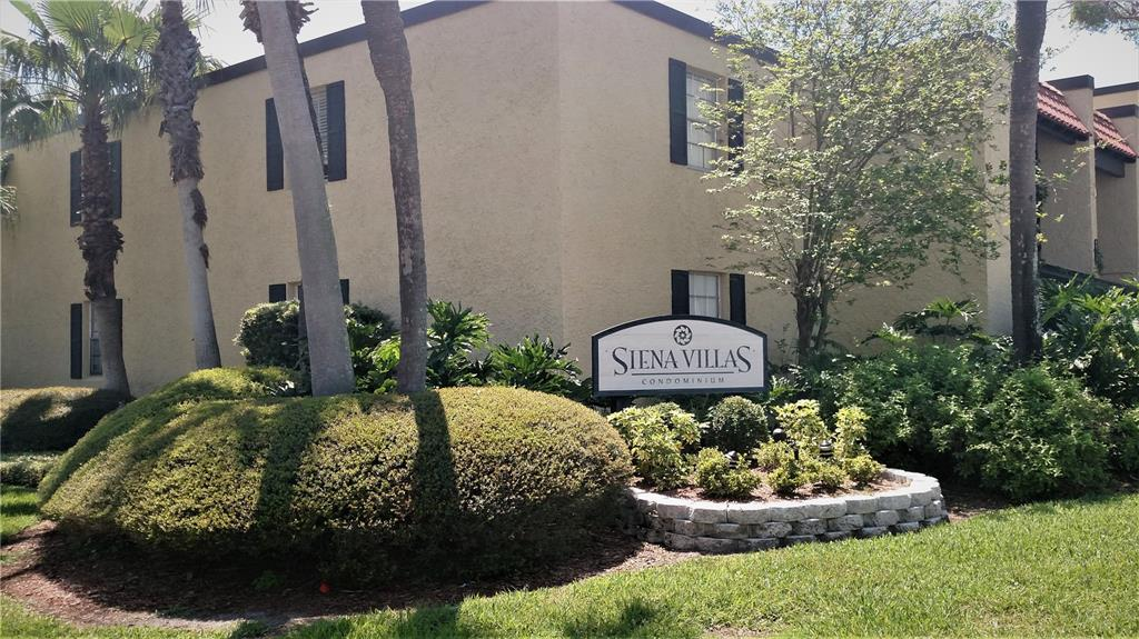 5305 San Sebastian Court 127, Tampa, FL 33609