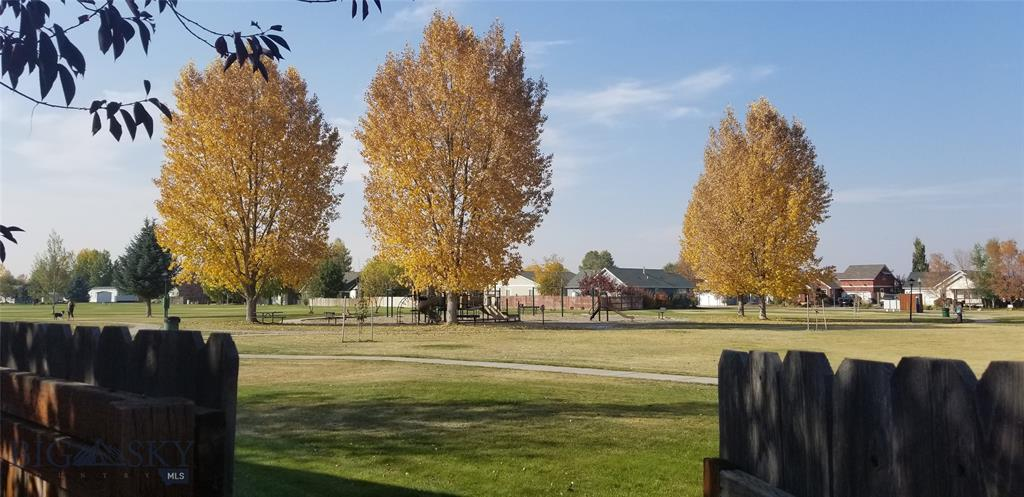 405 Green Tree