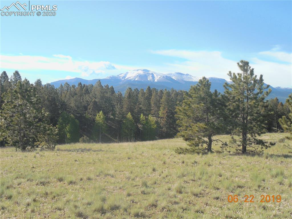 Fantastic first time offering conveniently located close to Divide but with the feel of complete seclusion. Easily accessed from paved county rd. Can be split into 35 acre parcels in the future. Plenty of level area with meadow for horses, high ridge lines with excellent building sites, incredible scenic beauty and plentiful wildlife. Unencumbered postcard perfect views of Pikes Peak. If you are looking for the perfect place to build your Colorado dream home, this is it! The true definition of Rocky Mountain paradise!