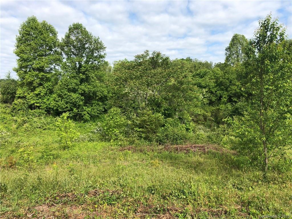 Great corner lot in Old Orchard Subdivision. Easy build lot with level access and nice laying lot for crawlspace or basement. Beautiful spot and lots of room on this almost acre lot. Gated sub with pool and clubhouse. Convenient drive down 64 back to town.