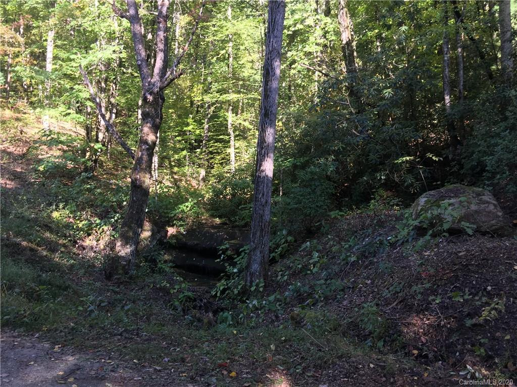 Beautiful wooded property (just under 3 acres) borders year round Waterfall Creek which has several waterfalls.  Enjoy privacy yet be close to town. Minutes from Edneyville Post Office and Fire Department. Take a short trip to the apple orchards.