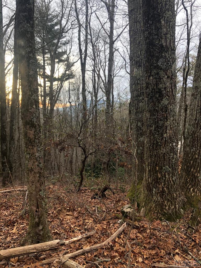 Beautiful 3.32 acre wooded parcel. Panoramic long term mountain winter views.  No Restrictions! Buyer will need to secure the road right of way easement.