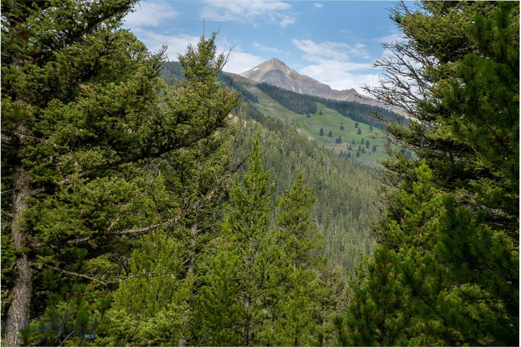 "One of the last ""ridge line"" lots in Antler Ridge with excellent views of Lone Peak and Big Sky Resort ski runs.  Adjacent open space makes this lot feel like a 5 to 10 acre lot."
