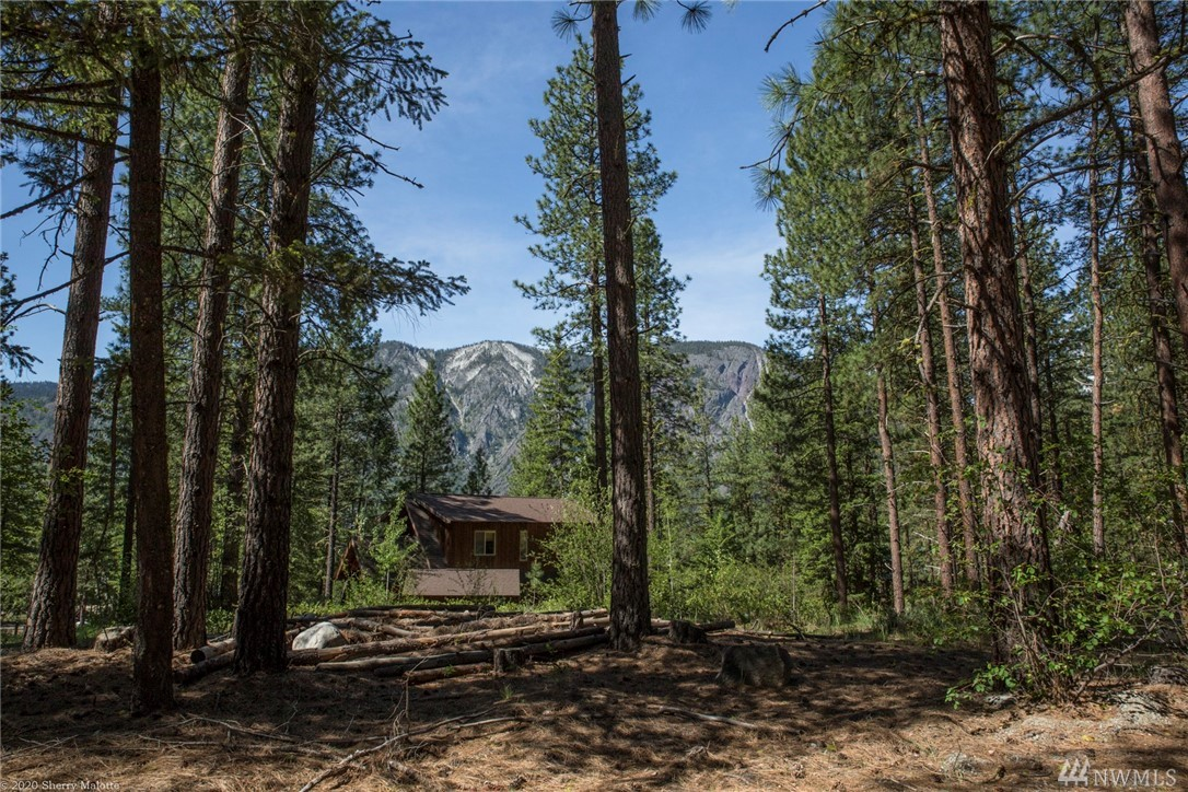 Beautiful, level lot in Edelweiss available. Convenient location, easy access and community drain field connection. Come play in the Methow Valley as a part-timer or build your life here in this wonderful community. Close to mountain bike, hiking and skiing trails. Enjoy the community pool in summer and snow activities in winter.