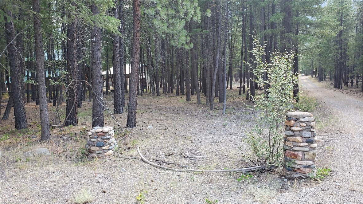 Enjoy the great out doors in this pristine Mazama neighborhood.  This level 2.1 acre property runs from Lost River Rd back to a side stream/channel of the Methow River.  Lots a trees and wildlife in the area. Camp or build a home here for summer time biking, hiking and fishing or winter snow activities!  An easy walk to the Mazama Store too.  No address assigned. See sign to identify lot entry. Call for details.