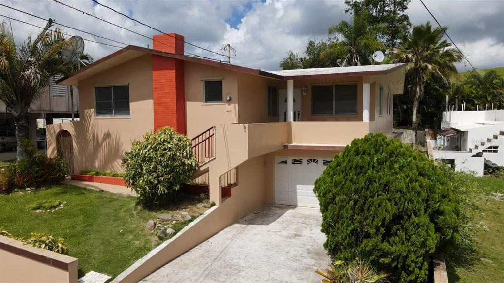 Calle Las Flores Buena Vista, Aibonito, PR 00705