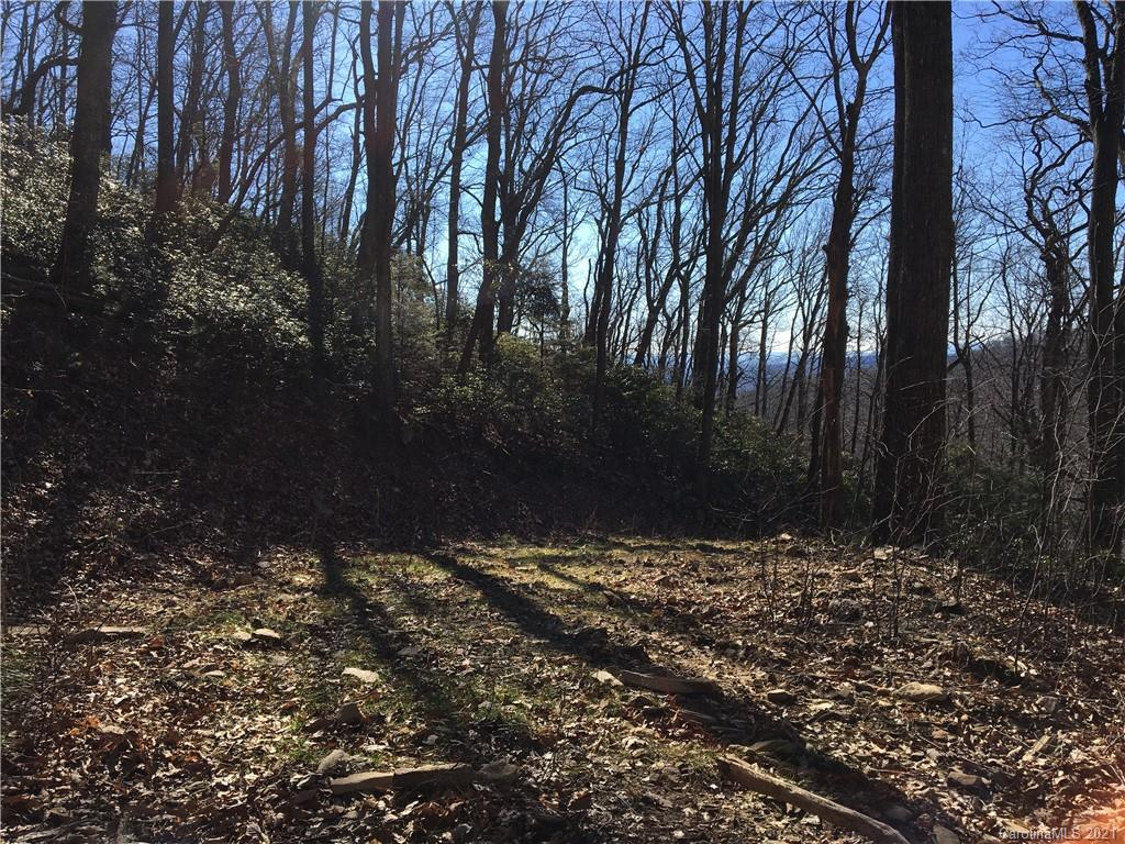 This is an ideal parcel for investment or buyer seeking spectacular views, high elevation and end of road privacy. These are 2 properties surrounded by large wooded lots. The adjoining parcel is similar in topography, is one of 2 parcels offered in this listing MLS 3640268  is 2.27 acres has a driveway that you can walk up to get an idea of view potential. A path is being cleared for the top of the driveway into the 2.93 acre parcel to make viewing the potential homesite easier. Fairview Forest is a park like community with homes tucked away on generous wooded parcels. The recently renovated clubhouse is located along side a pristine mountain creek and is a wonderful place for large gatherings and community events.