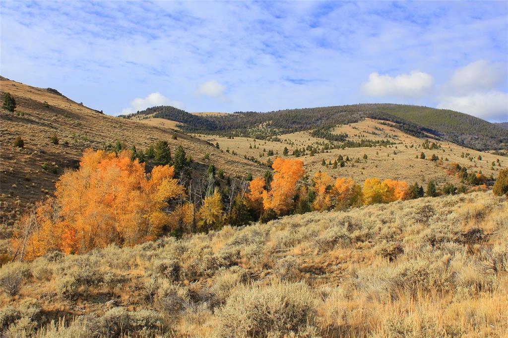 TBD Trapper Creek Road