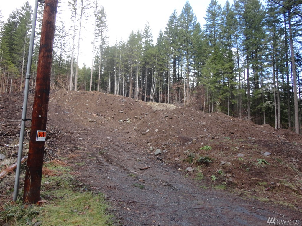 This larger .4 acre lot is pretty steeply sloped with views over roof tops to the golf course and surrounding Cascade foothills. Great spot for a year-round or vacation home. Close to year-round outdoor recreation opportunities in Mt. Rainier National Park, White Pass Ski Area and surrounding Gifford Pinchot Forest.  Amenities include nine-hole golf course, community pools, clubhouse and walking paths. Dues of $378/year includes water.
