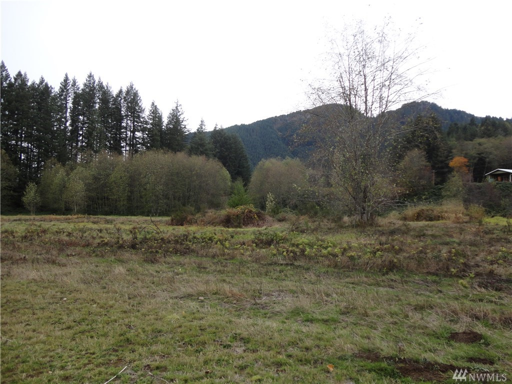Beautiful 360 degree Cascade foothills territorial views.   Acre plus for spreading your wings or building multifamily units.  3 contiguous parcels listed separately.  City Water available.  Will need septic system.  Level topography with large hill to the north which protects property from S.R. 508.  Close to town, walk across road to Gus Backstrom Park and Tilton River access.  Year-round outdoor recreation at nearby Mt. Rainier, Mt. St. Helens, G.P. National Forest and White Pass Ski Area.