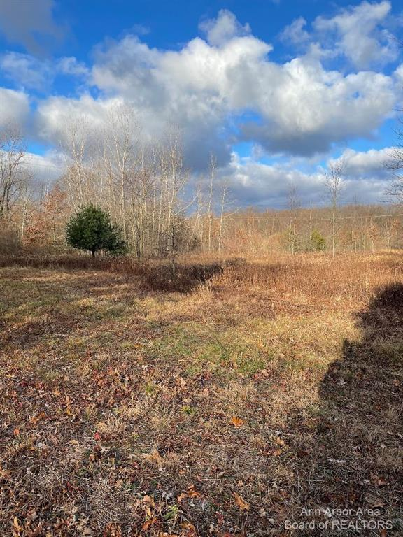 Looking for a large, but affordable building site close to freeways, look no further. Nice partially wooded parcel where deer, turkeys and other wildlife abound on a nice private feeling dirt road. There is a split available--owner will not split.