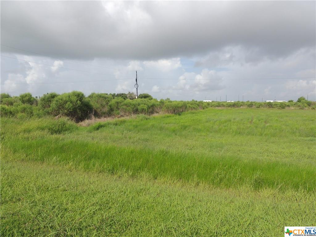 2 lots at Alamo Beach located on a grassy road (platted)