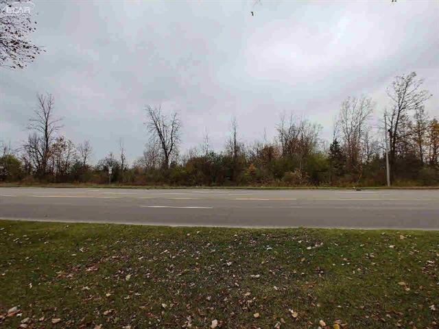 High traffic count Pierson Rd commercial area. Approximately one mile from I-75 exit. 10 acres with 590' frontage with possible split.