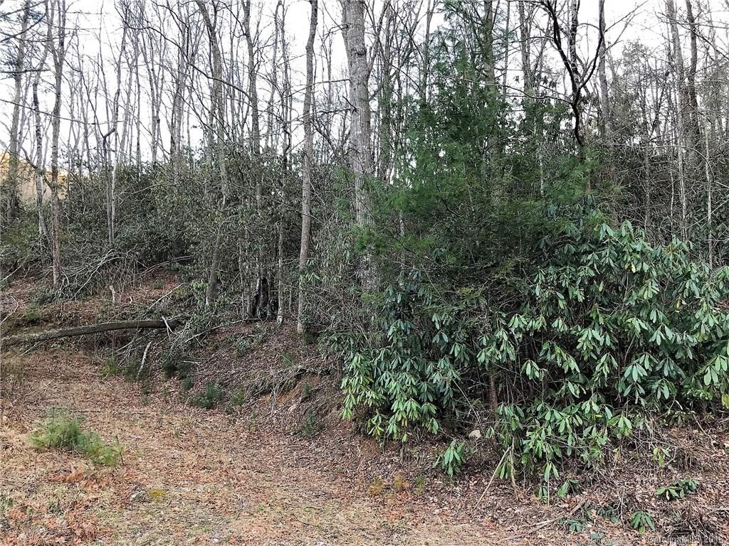 Build your mountain dream home or homes (at least 4 building sites possible) on this beautiful wooded 7.92 acre property.  Some winter views available. Peace and privacy.  Can be subdivided.  Expired 3 Bedroom septic on file.  This property is zoned open use, so any type of home can be constructed on it--manufactured, modular, site built, without SF restrictions. 