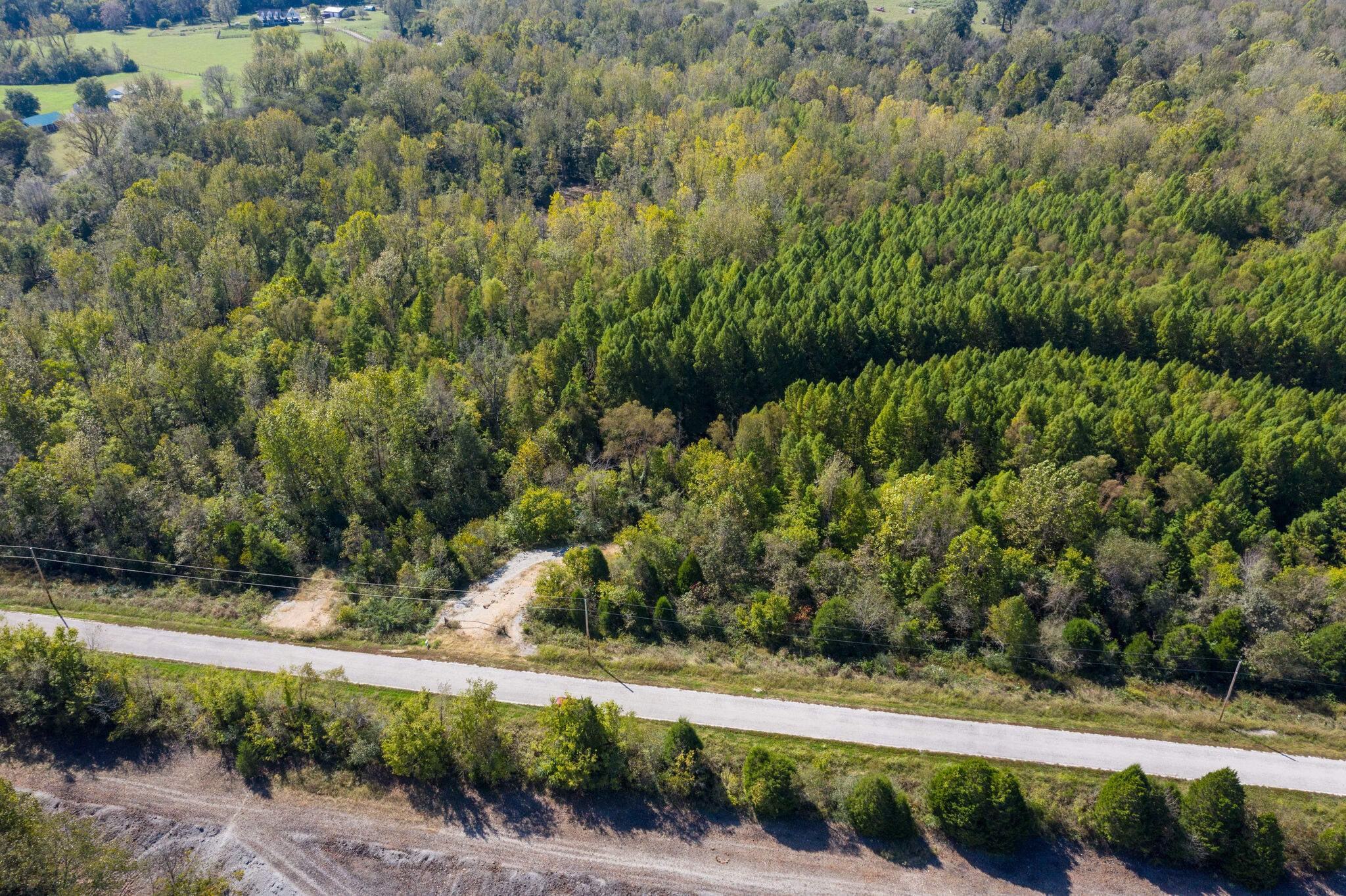 114.09 +/- Acres. Land has a perk site. Lots of road frontage with a view of a large pond across from the property. Really nice buildable land with lots of wildlife.