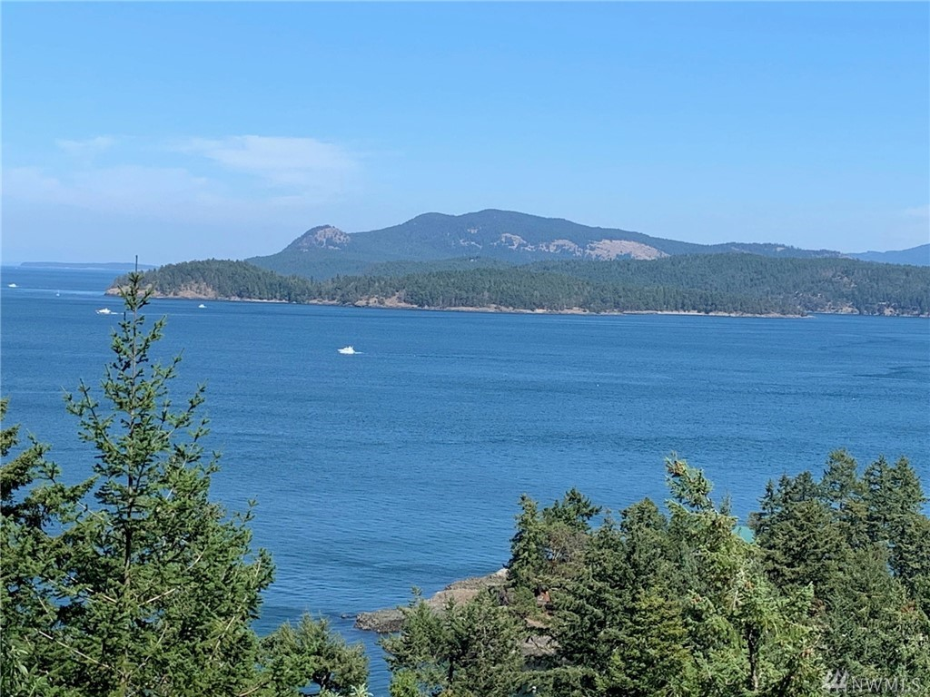 Exceptional views from this 2 bedroom, 1 bath home perched high on Upper Drive. Bamboo flooring , pellet stove and granite counter tops in kitchen with farmhouse sink. See boating in the channel, the ferry, Waldron Island, Turtleback Mountain on Orcas Island and more. 1 car detached garage with extra storage. Perfect deck with lots of sun.