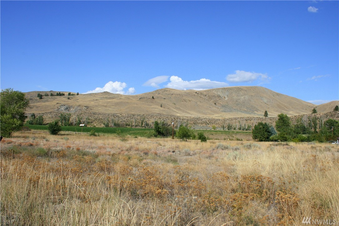 Beautiful property South of Twisp. 1.2 acres. Flat usable property close to town. Ready for your development dreams.