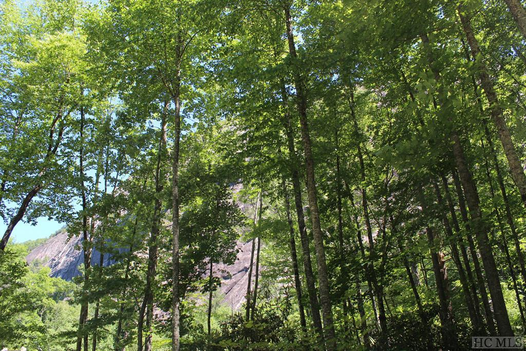Lot 46 East Valley Drive, Sapphire, NC 28774